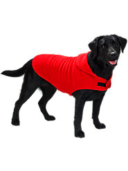 Comfy Polartec Fleece Coat Keeps Your Pooch Warm and Dry